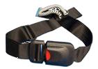 belt alarms