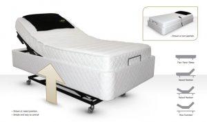 Avante Bed